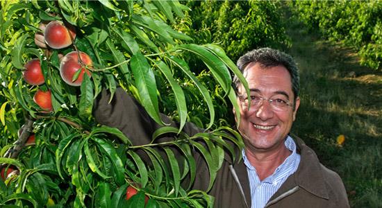 Tany-Nature-Hitos-de-nuestra-historia-productores-de-fruta-Extremadura-1980