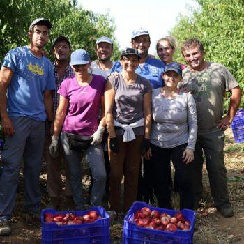 Tany Nature La comunidad Tanynature productores de fruta buenas practicas sociales (1)