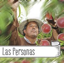 Tany-Nature-fruta-la-familia-las-personas-productores-Extremadura-Zurbaran