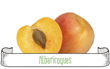 Tanynature-productores-fruta-de-hueso-albaricoques-Extremadura-Zurbaran