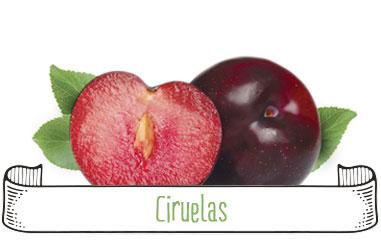 Tanynature-productores-fruta-de-hueso-ciruelas-Extremadura-Zurbaran