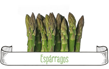 Tanynature-productores-fruta-de-hueso-esparragos-Extremadura-Zurbaran