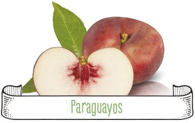 Tanynature-productores-fruta-de-hueso-paraguayos-Extremadura-Zurbaran