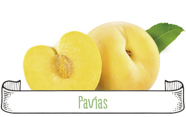 Tanynature-productores-fruta-de-hueso-pavias-Extremadura-Zurbaran
