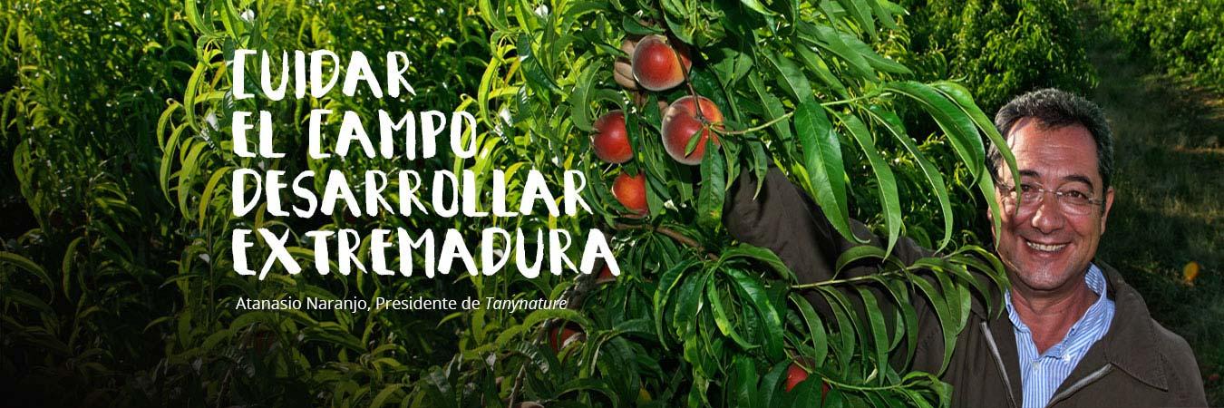 Tany Nature fruta ciruelas nectarinas melocotones pavias albaricoques paraguayos platerinas caquis esparragos productores Extremadura Zurbaran